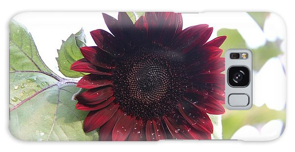 Deep Red Sunflower Galaxy Case by Yumi Johnson