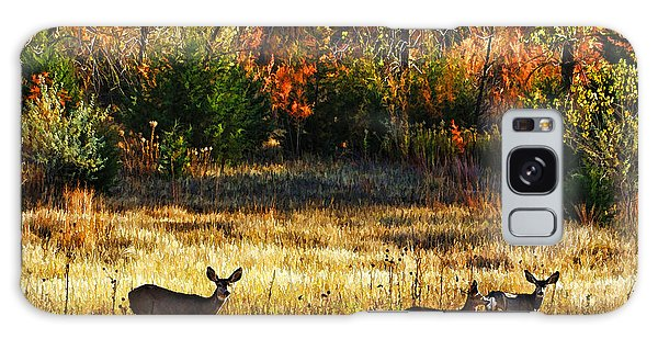 Deer Autumn Galaxy Case by Bill Kesler