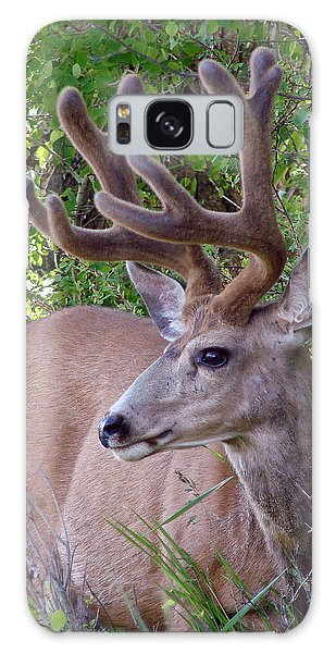 Buck In The Woods Galaxy Case by Athena Mckinzie