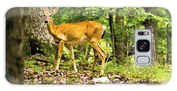 Galaxy Case - Deer In The Woods by Frank Savarese
