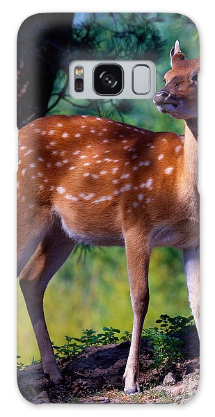 Deer In The Woods Galaxy Case