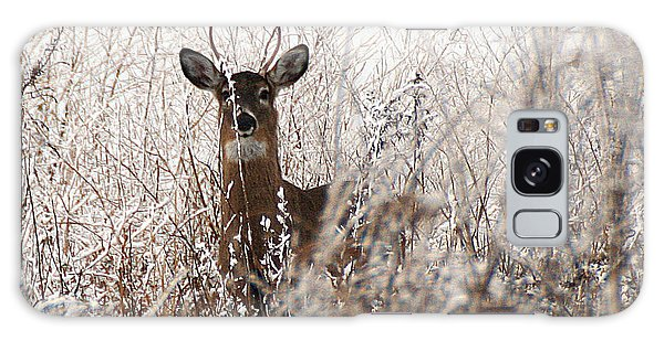 Deer In Winter Galaxy Case