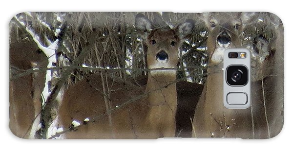 Deer Posing For Picture Galaxy Case by Eric Switzer