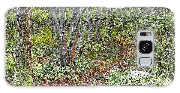 Deer Trail Early Autumn Pocono Mountains Pennsylvania Galaxy Case