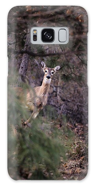 Deer's Stomping Grounds. Galaxy Case by Joshua Martin