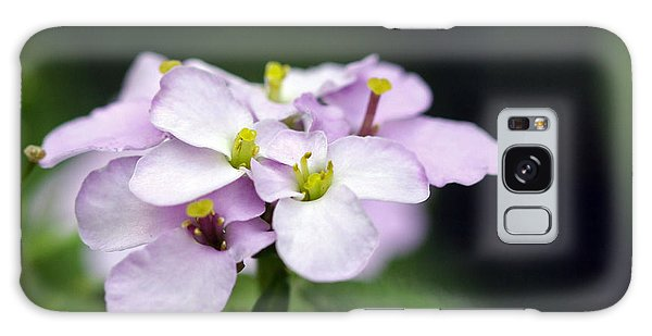 Delicate Beauty Galaxy Case by Denise Pohl