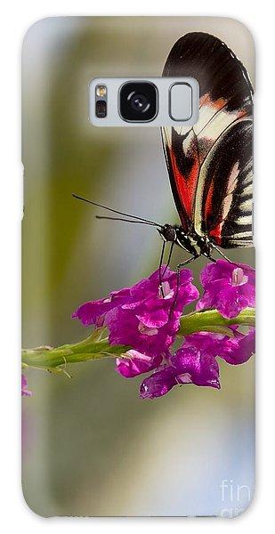 delicate Piano Key Butterfly Galaxy Case
