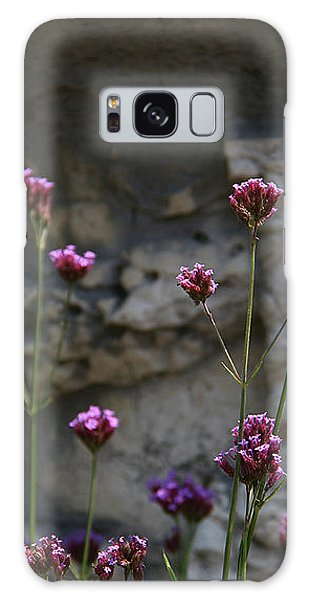 Delicate Pinks Galaxy Case by Yvonne Wright