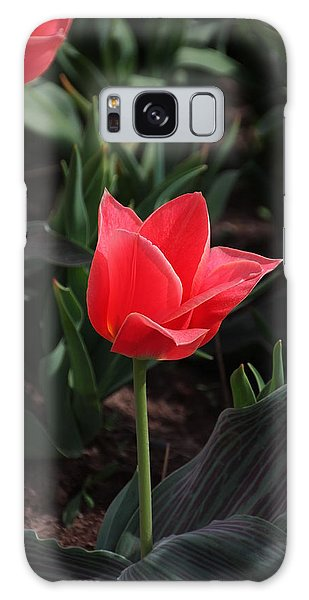 Delicate Red Tulip Galaxy Case by Bill Woodstock