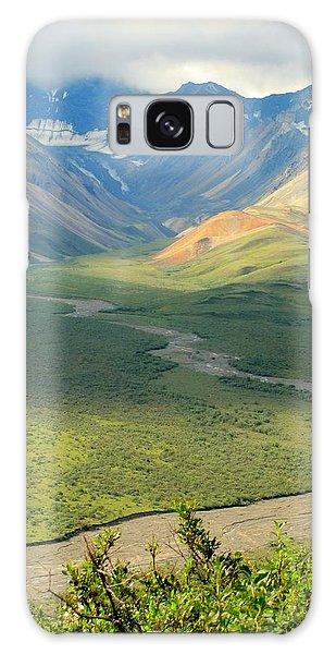 Denali National Park Galaxy Case