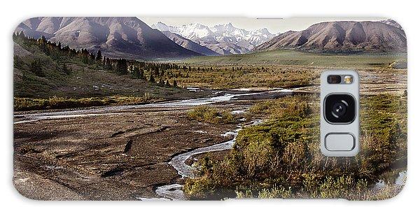 Denali Toklat River Galaxy Case by Penny Lisowski