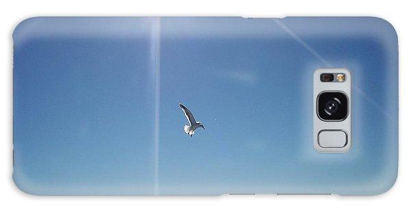 Descending Gull Galaxy Case