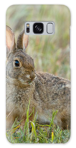 Desert Cottontail Galaxy Case