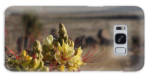 Desert Flowers Galaxy Case by Amber Kresge