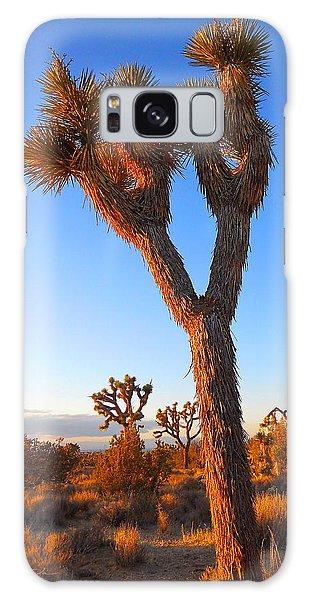 Desert Poet Galaxy Case