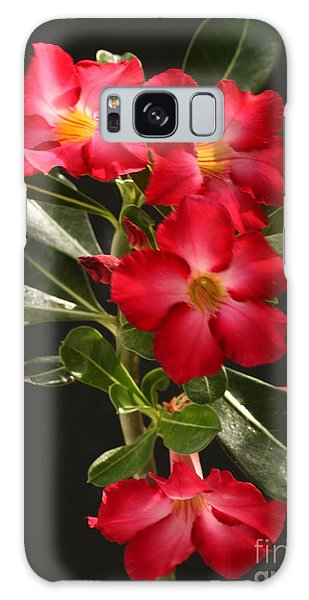 Desert Rose Galaxy Case
