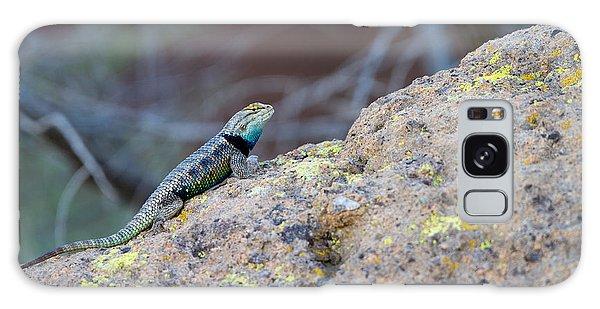 Desert Spiny Lizard Galaxy Case