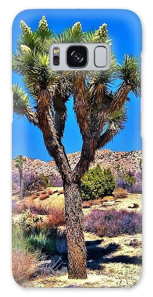 Desert Spring Galaxy Case by Angela J Wright