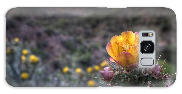 Desert Sunset Blossom Galaxy Case