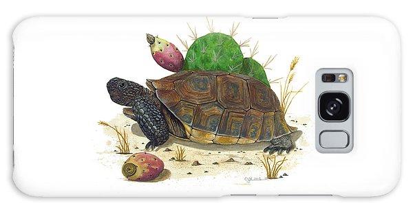 Desert Tortoise Galaxy Case