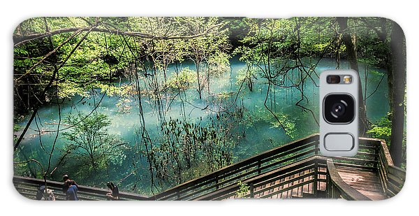 Galaxy Case featuring the photograph Devil's Millhopper by Joan Carroll