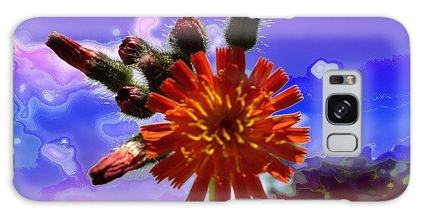Devil's Paintbrush Galaxy Case by Mike Breau