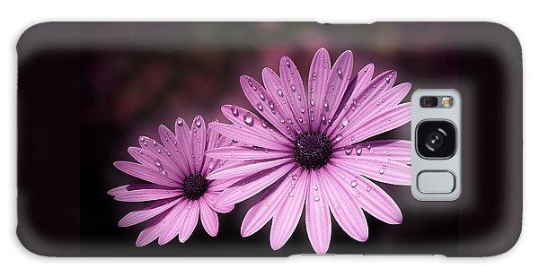 Dew Drops On Daisies Galaxy Case