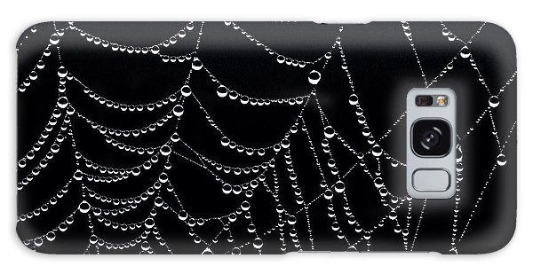 Dew Drops On Web 2 Galaxy Case by Marty Saccone