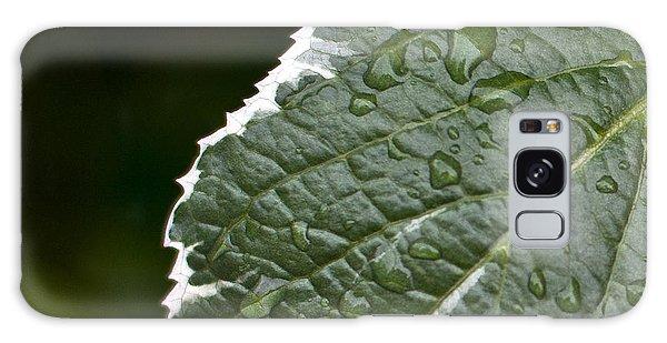 Dew On Leaf Galaxy Case by Crystal Hoeveler