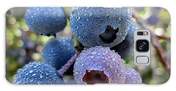 Dewy Blueberries Galaxy Case