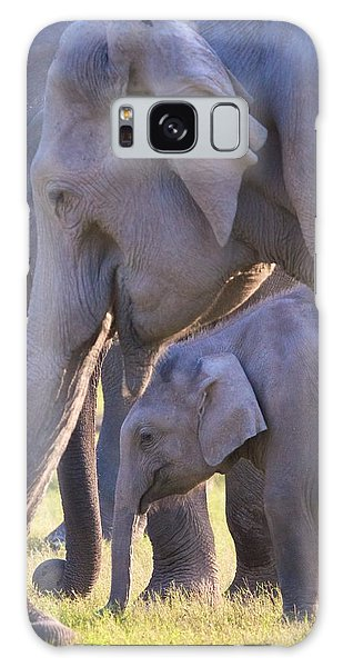 Dhikala Elephants Galaxy Case
