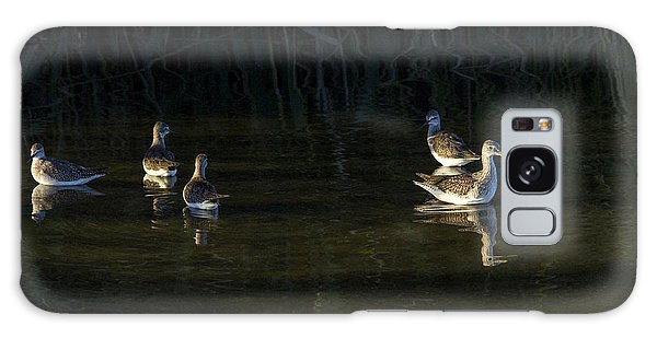 Digital Oil Of Sandpipers Galaxy Case