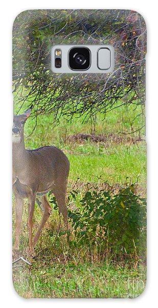 Doe A Deer Galaxy Case