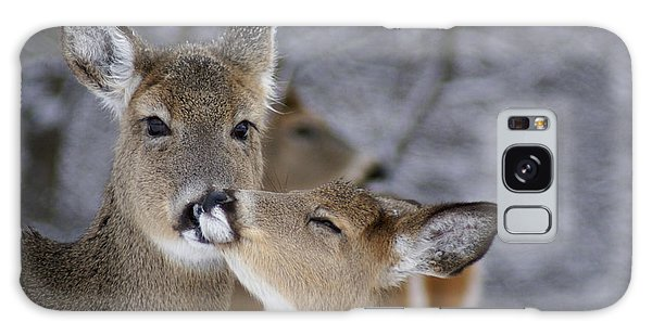 Doe And Fawn Galaxy Case by Larry Bohlin