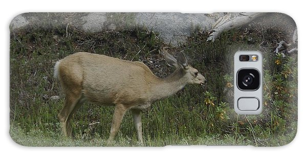 Doe Mule Deer Feeding Galaxy Case
