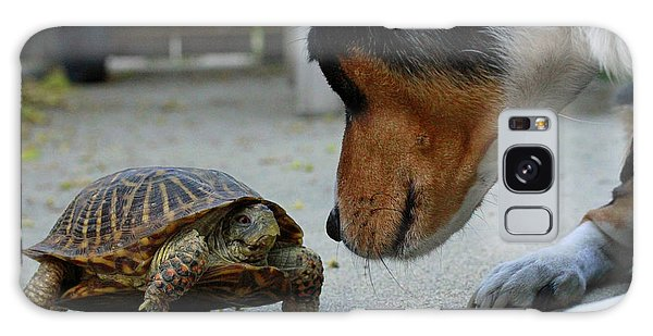 Dog And Turtle Galaxy Case by Shoal Hollingsworth