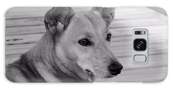 Dog In Black And White One Galaxy Case