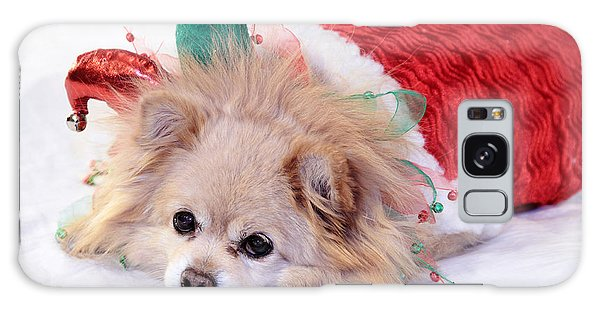 Dog In Christmas Costume Galaxy Case