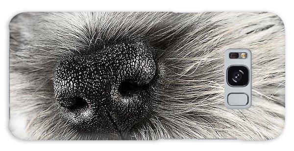 Dog Nose  Galaxy Case by Stephanie Frey