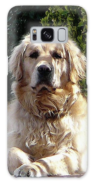 Dog On Guard Galaxy Case