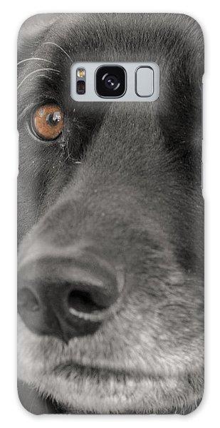 Dog Peek A Boo Galaxy Case