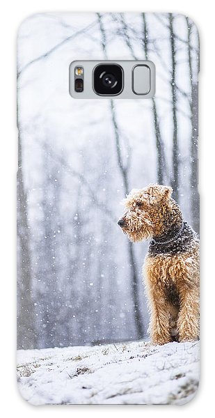 Dog Sits Under The Snowfall Galaxy Case