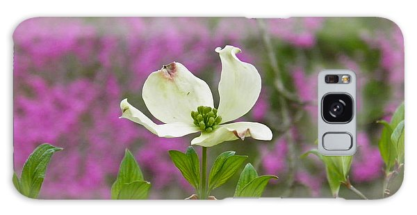 Dogwood Bloom Against A Redbud Galaxy Case by Nick Kirby