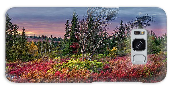 Dolly Sods Windswept Sunset Galaxy Case
