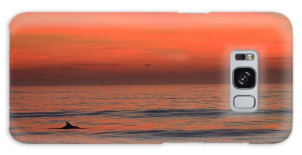 Dolphin At Cape Hatteras Galaxy Case by Mountains to the Sea Photo