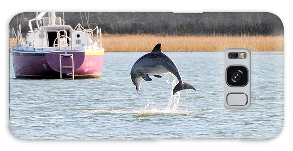 Dolphin Jumping In Taylors Creek Galaxy Case by Dan Williams