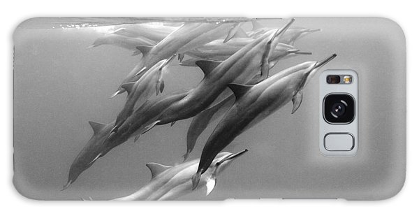 Dolphin Galaxy Case - Dolphin Pod by Sean Davey