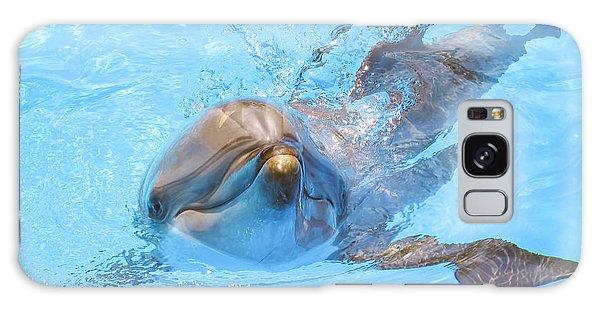 Dolphin Swimming Galaxy Case