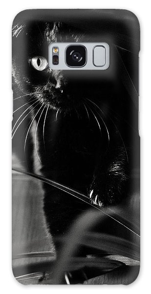 Domestic Black Panther Galaxy Case by Laura Melis
