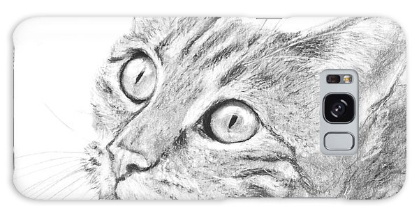 Domestic Cat Portrait Galaxy Case